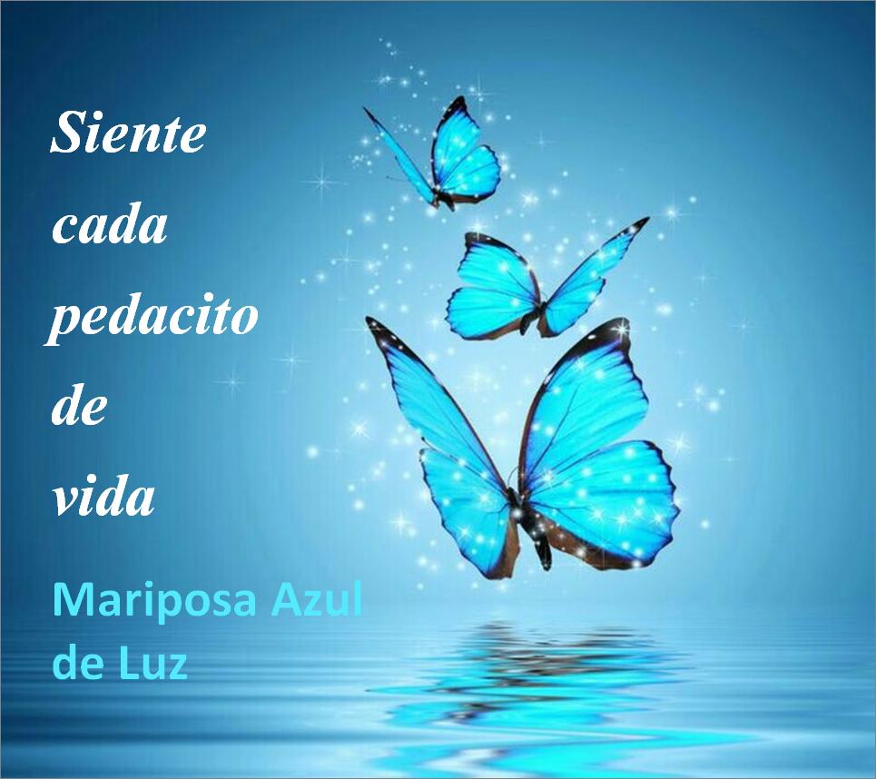 1.La vida. siente cada pedacito de vida. Mariposa Azul de Luz