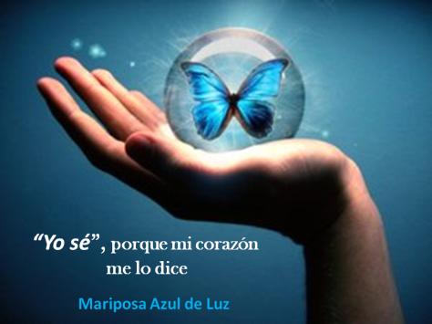 3- I Know. Mariposa Azul de Luz