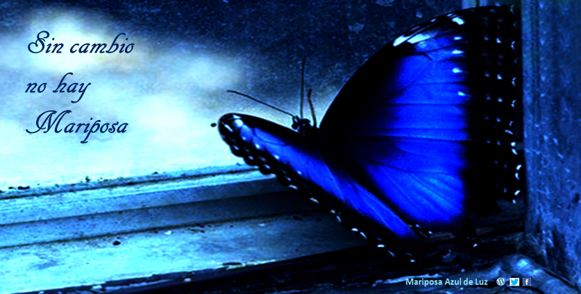 18-a-donde-vamos-madeluz-sin-cambio-no-hay-mariposa