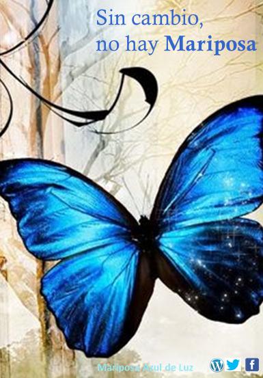 sin-cambio-no-hay-mariposa-madeluz