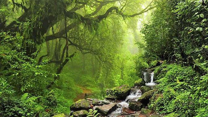 43. Introducción a la respiración y a la meditación.