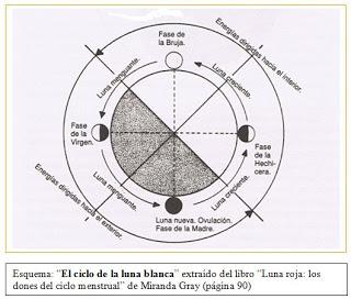 Esquema El ciclo de la luna blanca, compartido por mariposaazuldeluz.com