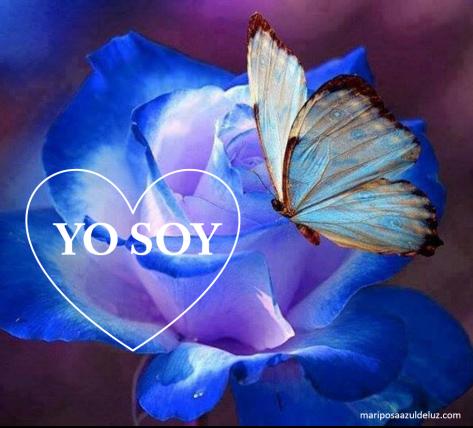 YO SOY. Mariposa Azul de Luz..png