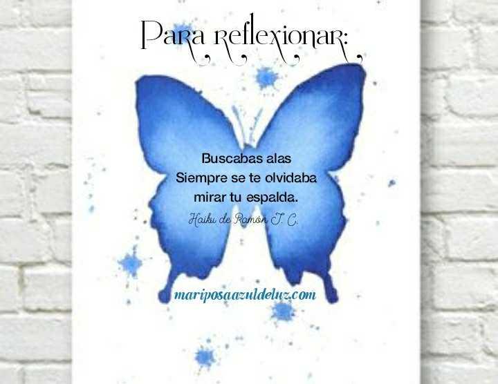 27 Mariposa Mariposa Azul De Luz